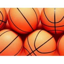 Žoge za košarko